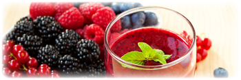 berry juice concentrate suppliers in the usa
