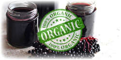 organic elderberry juice concentrate